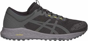 Asics Men's Alpine - Slip Resistant Trail Shoe